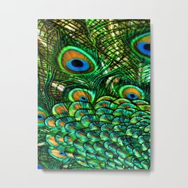 Pretty Peacock Metal Print