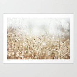 Dewdrop Nature Photography, Neutral Dew Drop, Gold White Brown Beige, Cream Water Drops Art Print