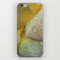 The Beauty of Life iPhone & iPod Skin