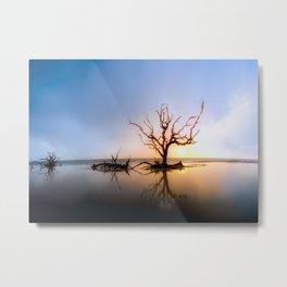 Driftwood Reflection Along the Waters Edge on Jekyll Island Beach Metal Print