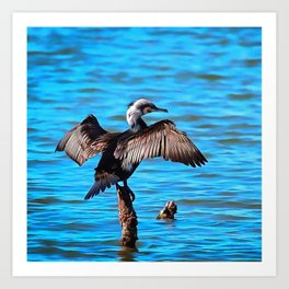 Cormorant Wings on Blue Water Art Print