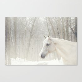 Domino in the snow Canvas Print
