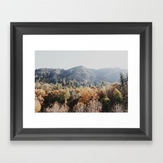 fall Covered Mountain Framed Art Print