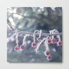 Berry Ice Freeze Metal Print