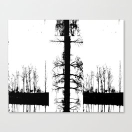 Trees in Transition Canvas Print