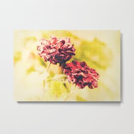 Who Wrote the Book on Beautiful? Metal Print