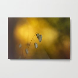 Drying summer Metal Print