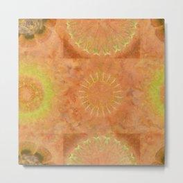 Lunular Balance Flowers  ID:16165-051446-23480 Metal Print
