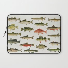Illustrated North America Game Fish Identification Chart Laptop Sleeve
