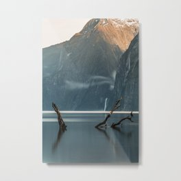 Cormoran at Milford Sound Metal Print