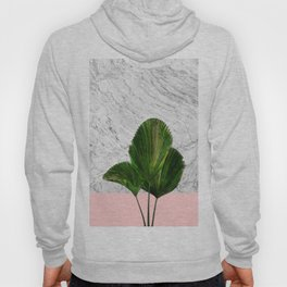 Palm Plant on Marble and Pastel Wall Hoody