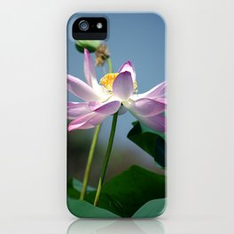 Lotus Blooms iPhone Case