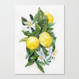 lemon tee Canvas Print