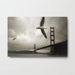 Seagulls over Sausalito Metal Print