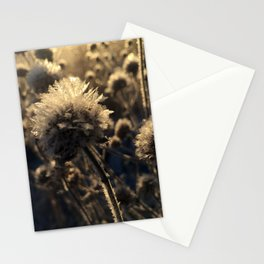 Bee Balm Frost Stationery Cards