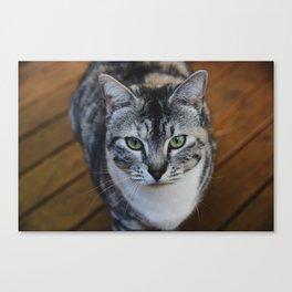 Bonnie I Canvas Print