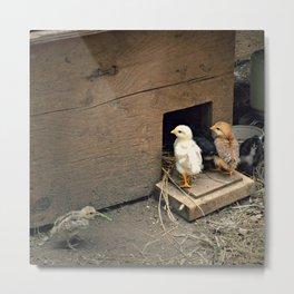Chick House Metal Print