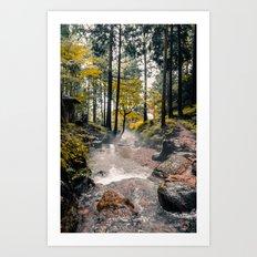 Hidden Path 2 Art Print