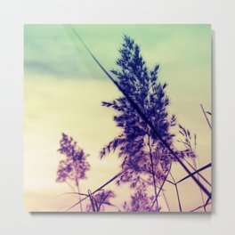 Soft Tickling 1 Metal Print