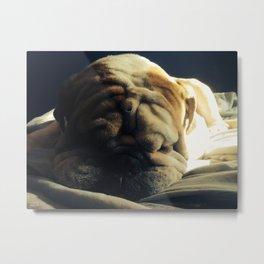 Sleeping Hercules Metal Print