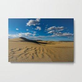 Killpecker_Sand_Dunes II, Sweetwater_County, WY Metal Print