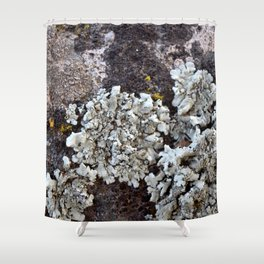 Smattering of Lichens Shower Curtain