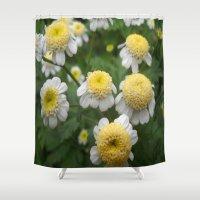 daisies Shower Curtains featuring Daisies by Vitta