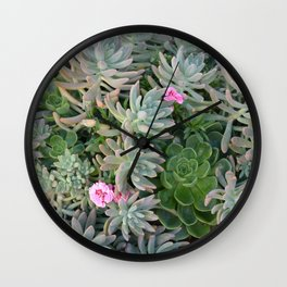 Plant with pink flowers Wall Clock