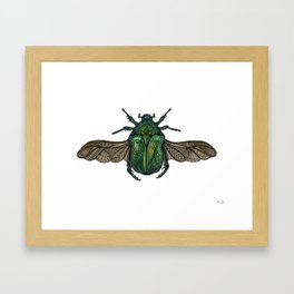 Egyptian Scarab Framed Art Print