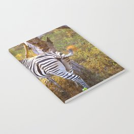 Zebra Sway Notebook