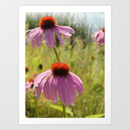 Flowers Along the Lake Art Print