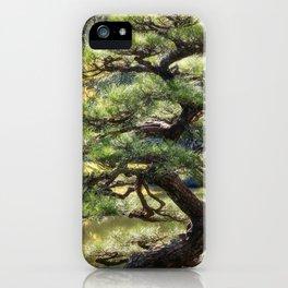 Sculptural pine trees in a Zen Garden in Kyoto. iPhone Case