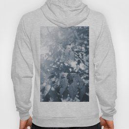 Abide with Me (Blue) Hoody