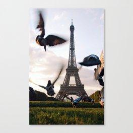 Paris Eiffel tower and flight of birds Canvas Print