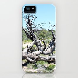 Gnarly Tree iPhone Case