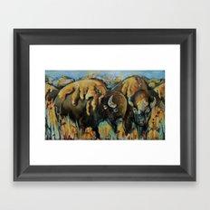 Spring Buffalo Framed Art Print