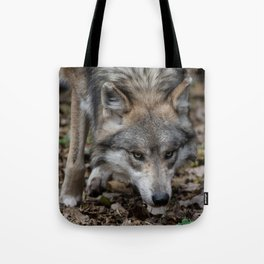 Mexican Gray Wolf Tote Bag