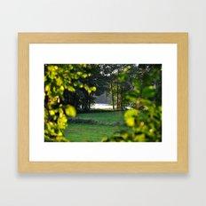 nature view Framed Art Print