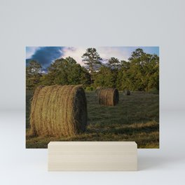 Rolls of Hay in Golden Hour Mini Art Print