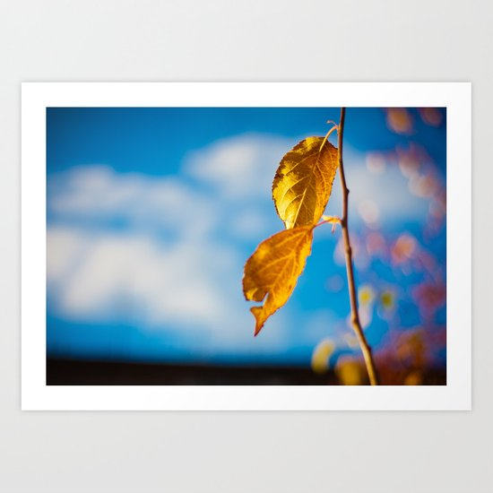 Catchy Autumn Art Print