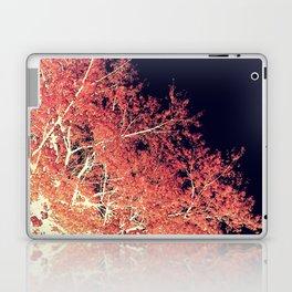 Inverted Tree Dark Night Laptop & iPad Skin
