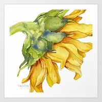 sunflower Art Prints featuring Sunflower by Cindy Lou Bailey