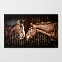 Horses in the Stable Canvas Print