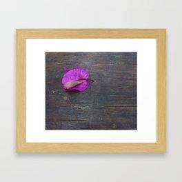 Bugambilia Framed Art Print