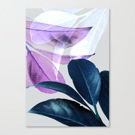 Blue Violet Leaves Canvas Print