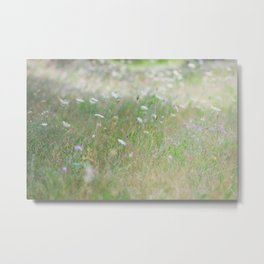 Middle of the prairie Metal Print