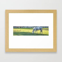 Dapple Framed Art Print