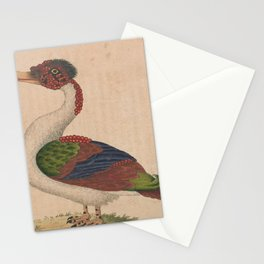 Merian Duck4 Stationery Cards
