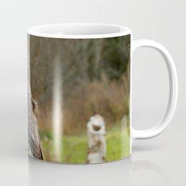 Waiting for night to fall Coffee Mug