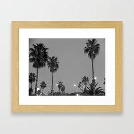 Palms in the night Framed Art Print